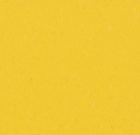 3648 Sunray
