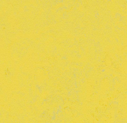 3741 Yellow Glow