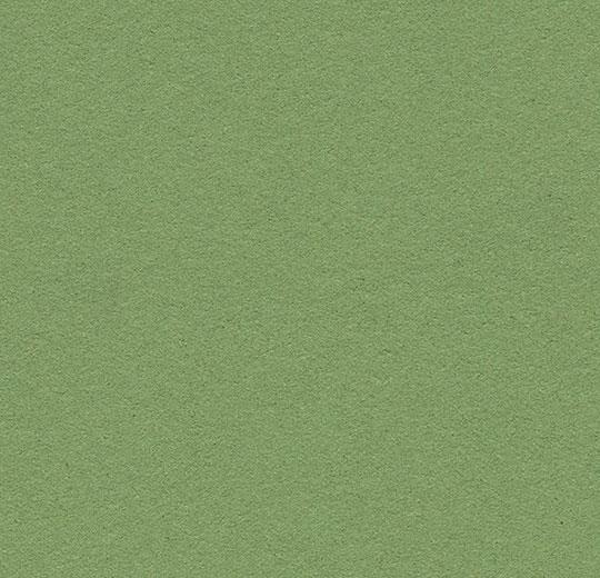 2213 Baby Lettuce
