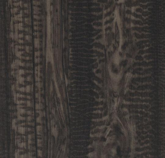w61217 Black Snakewood