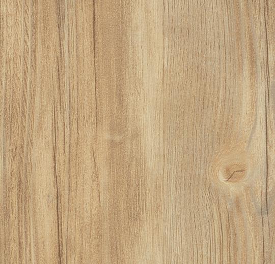 w60091 Bright Rustic Pine
