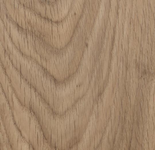 w60300 Central Oak