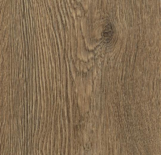 w60075 Forest Green Oak