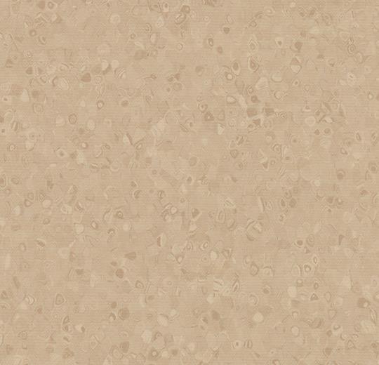 50024 Stone