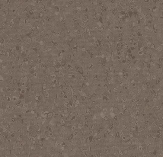 50021 Truffle