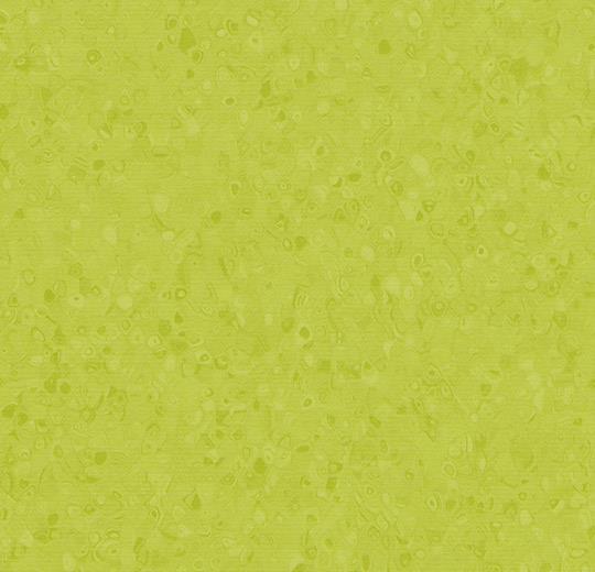 50049 Yellow Green