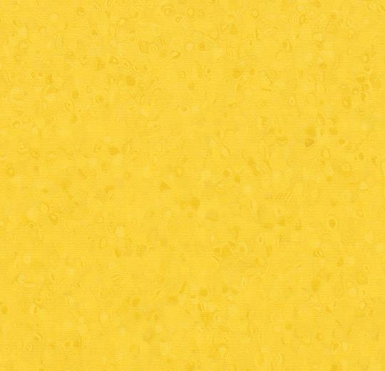 50053 Sun