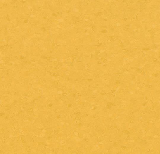 50054 Amber