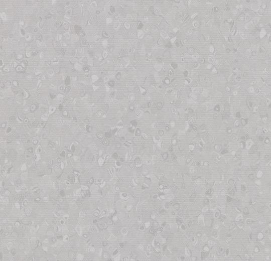 50008 Silver Grey