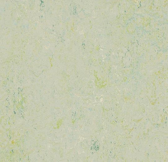 3430 Salsa Verde